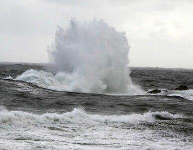 Zderzenie statków - Polacy wśród ofiar