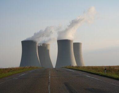 Japońska elektrownia atomowa przetrwała trzęsienie ziemi. Badacze...
