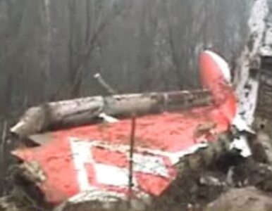 Edmund Klich: piloci Tu-154M byli źle przeszkoleni