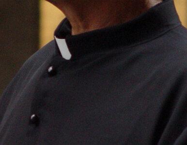 Świeccy zostaną kardynałami? Tak postuluje mnich ze Szwajcarii