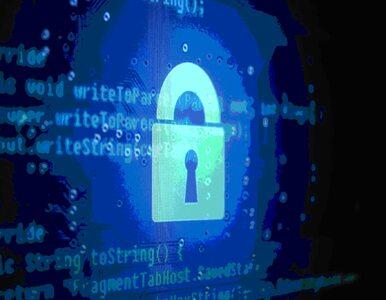 Polacy szukają prywatności w internecie