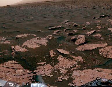 Przełomowe badania. NASA: Na Marsie odkryto materię organiczną