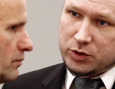 Breivik: rodziny moich ofiar cierpią tak, jak ja