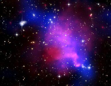 Brytyjczycy łączą teleskopy, by odnaleźć kosmitów