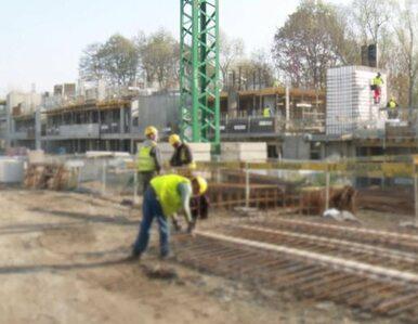 Czy trend wzrostowy w branży budowlanej się utrzyma?