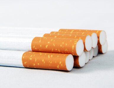 Zakaz palenia w Libanie