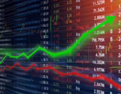 Polska ma czwartą agencję ratingową. Zamierza ułatwić inwestowanie na...