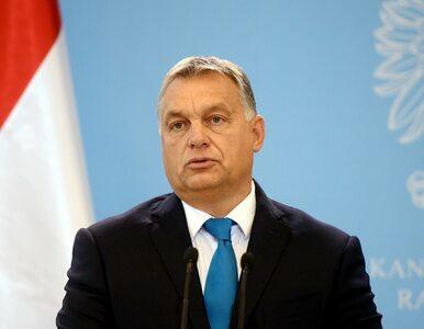 """Węgry potajemnie przyjęły uchodźców. """"Kombinatorstwo stulecia"""""""