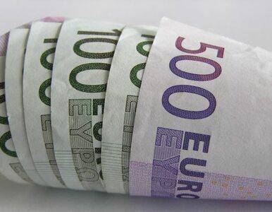 Coraz więcej Czechów nie chce euro