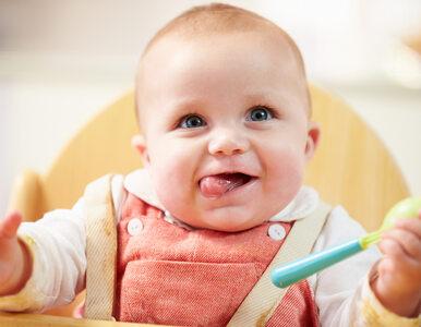"""Wzrost liczby urodzeń o 14 tys. w I półroczu. """"Idziemy na 400 tysięcy..."""