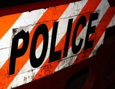 Makabryczne odkrycie na przedmieściach. Policja znalazła 11 ciał, 10...