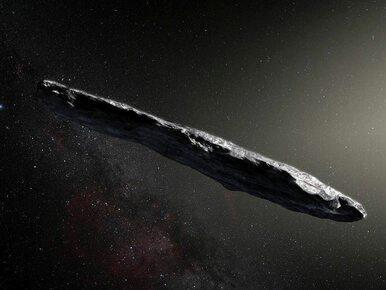 Sensacyjna teoria naukowców z Harvardu. Oumuamua to statek zwiadowczy...