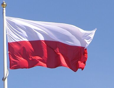"""""""Financial Times"""": Szczyt Klimatyczny w Polsce? To jakby Vito Corleone..."""