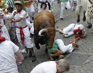 Pampeluna: 4 ofiary w corocznej gonitwie byków ulicami miasta