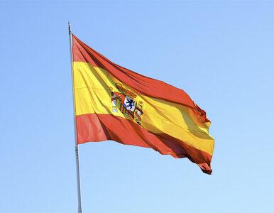 Polscy eksporterzy poradzili sobie bez Rosji. Hiszpanie pokochali nasze...