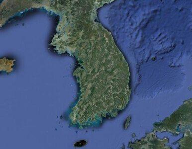 Korea Północna stawia warunki. Po ich spełnieniu możliwe rozmowy z USA i...
