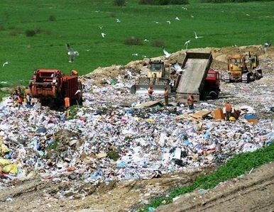 Albania zostanie śmietnikiem Europy? Zgoda na import śmieci