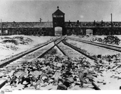 """Unikatowy"" Holocaust"