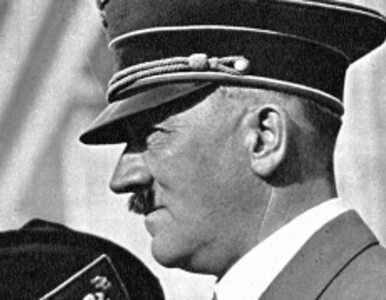 Belgowie: nazizm? To interesujące...