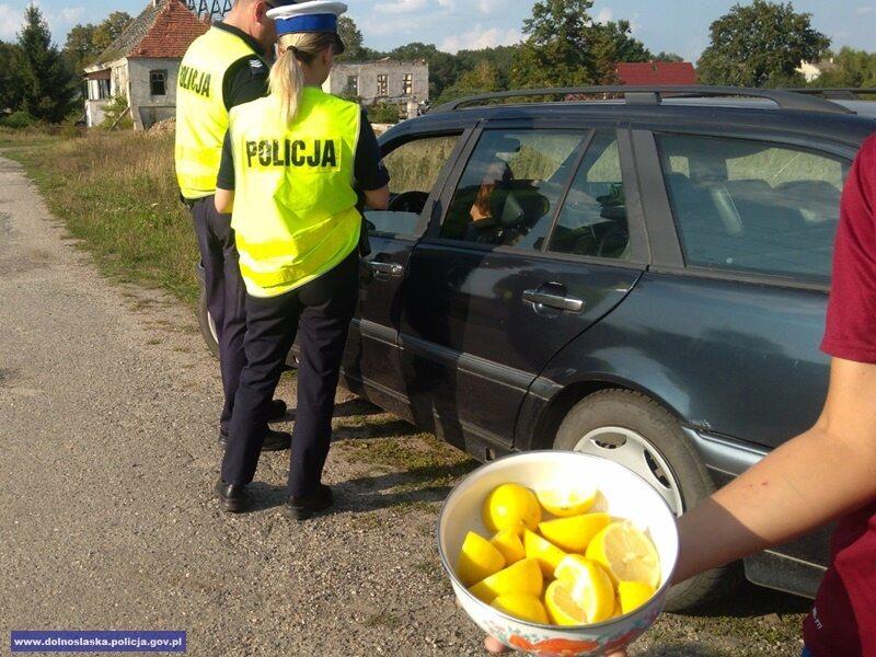 Zdjęcie z policyjnej akcji