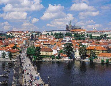 Wybory do czeskiego senatu wygrali socjaldemokraci