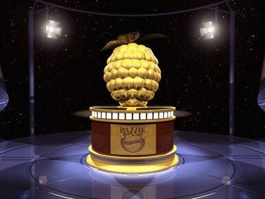 Złote Maliny 2017 - nominacje