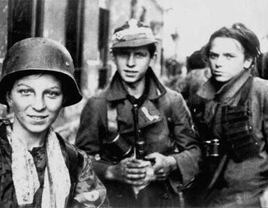 Powstanie Warszawskie przechodzi do sfery popkultury