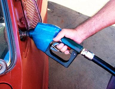 """Czy ceny benzyny jeszcze bardziej pójdą w górę? """"Raczej nie"""""""