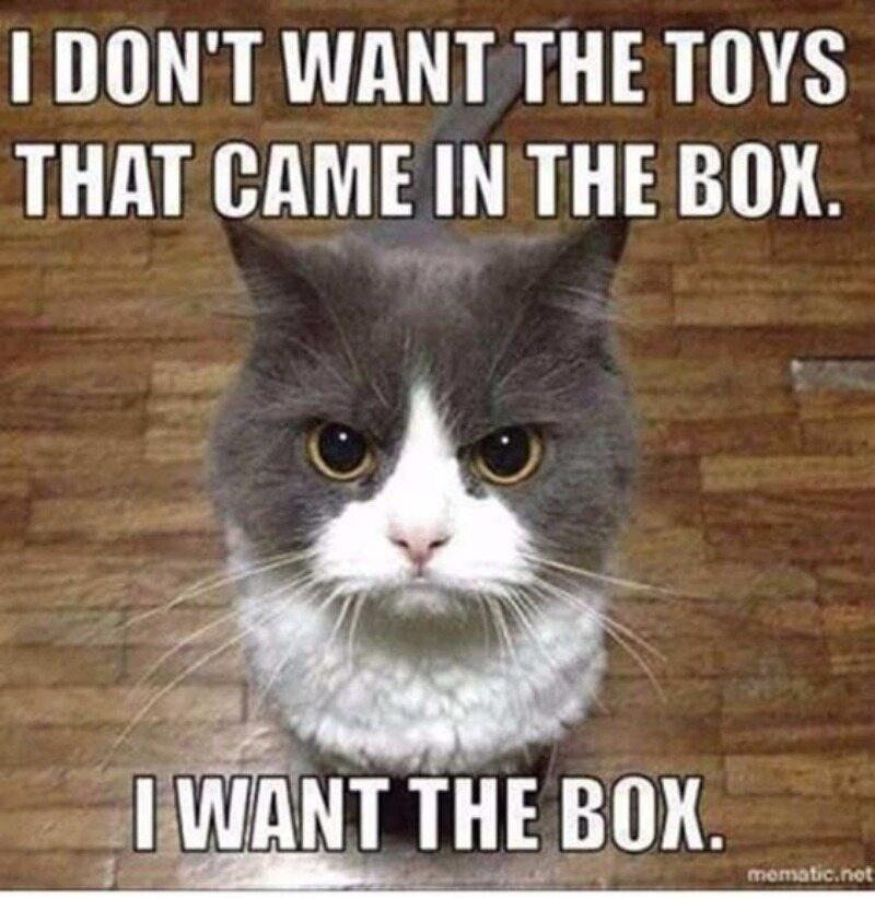 Nie chcę zabawek, które przyszły w pudełku. Chcę pudełka