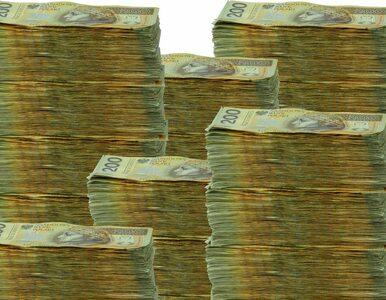 Co w 2013 roku wyjrzy z państwowej kasy? Dziura, ale jaka?
