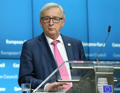 Szef Komisji Europejskiej wezwał portale społecznościowe do walki z...