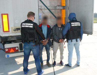 Wjeżdżali do Polski na naczepie ciężarówki. Straż Graniczna zatrzymała...