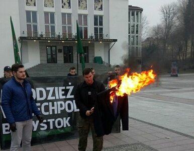 Młodzież Wszechpolska spaliła kukłę Ryszarda Petru. Polityk zawiadomił...