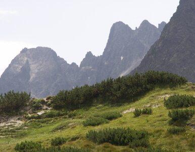 Tragiczny wypadek w Tatrach. Turysta zginął pod Rysami