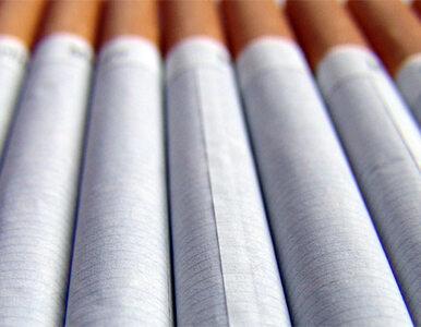 Przemytnicy stracili 12 milionów papierosów