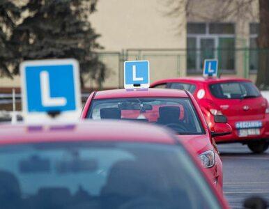 Czeka nas paraliż egzaminów na prawo jazdy? Minister nie zdążył z...