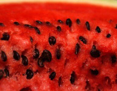 """Melon nazwano na cześć prezydenta """"Opiekunem"""""""