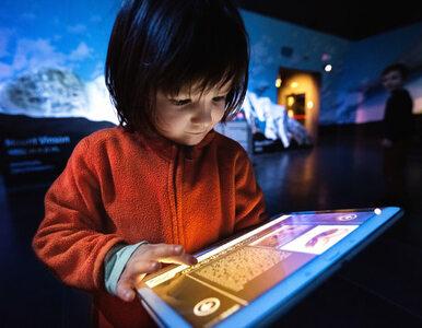 Korona Ziemi w Polsce dzięki interaktywnej technologii
