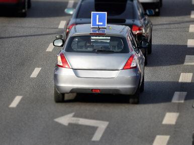 Niemiec zdawał prawo jazdy w Szczecinie. Na egzamin przyszedł pijany