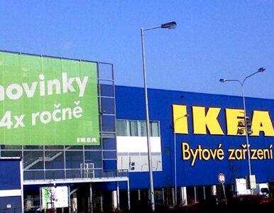 Bomby w sklepach IKEA to sprawka Polaków?