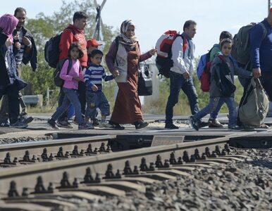 """Polska nie podpisze paktu w sprawie migracji. """"Najskuteczniejsza jest..."""