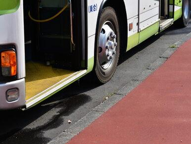 Volvo Polska dostarczy 12 autobusów hybrydowych do Krakowa