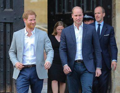 Książę William martwi się o brata. Harry mówił o swoich problemach