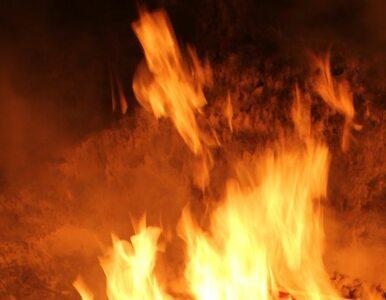 Radom: w nocy spłonęły trzy samochody