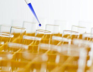 Przyjęto projekt ustawy in vitro