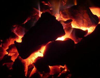 Były wiceminister: stan polskiego przemysłu węglowego jest zły