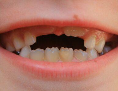 Bydgoszcz: miasto kupi budynek dla przyszłych dentystów?