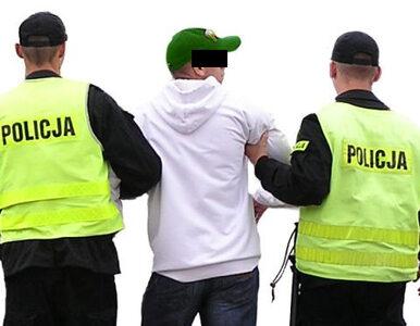 Napadli na policjantów. Zatrzymano już 23 osoby w tej sprawie
