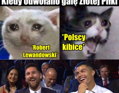 """""""Trzeba anulować bo przegramy"""". MEMY z Lewandowskim po odwołaniu..."""