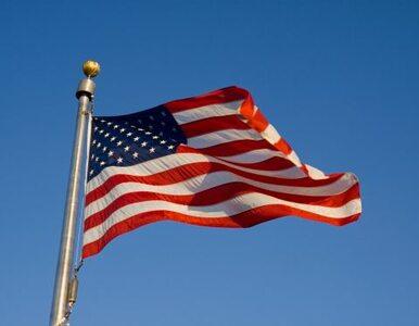 USA otwierają rynek. Owoce z UE trafią do Ameryki
